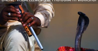 Visual Elements of Photography Workshop